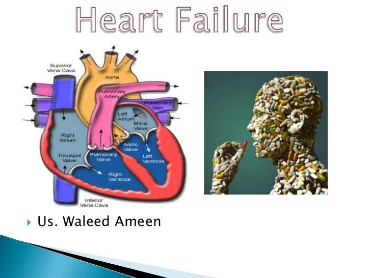    Us. Waleed Ameen