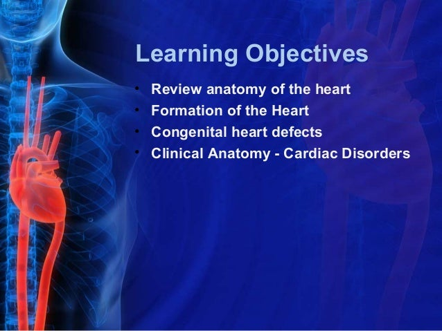 Learning Objectives•   Review anatomy of the heart•   Formation of the Heart•   Congenital heart defects•   Clinical Anato...