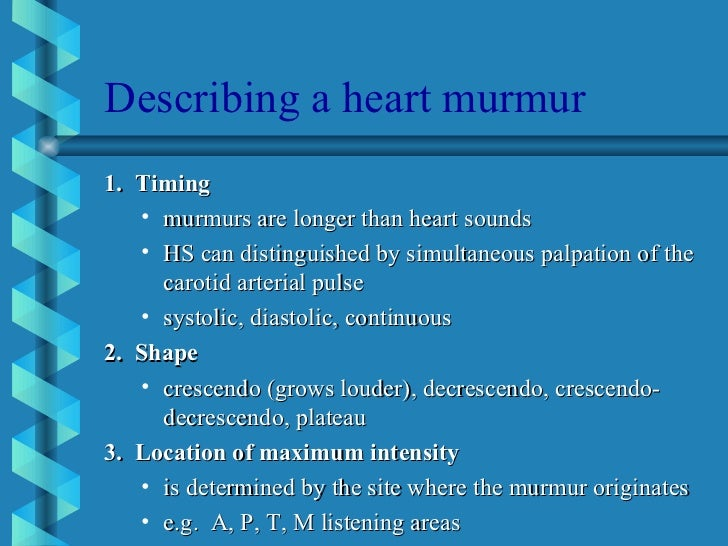 2 6 heart murmur in adult