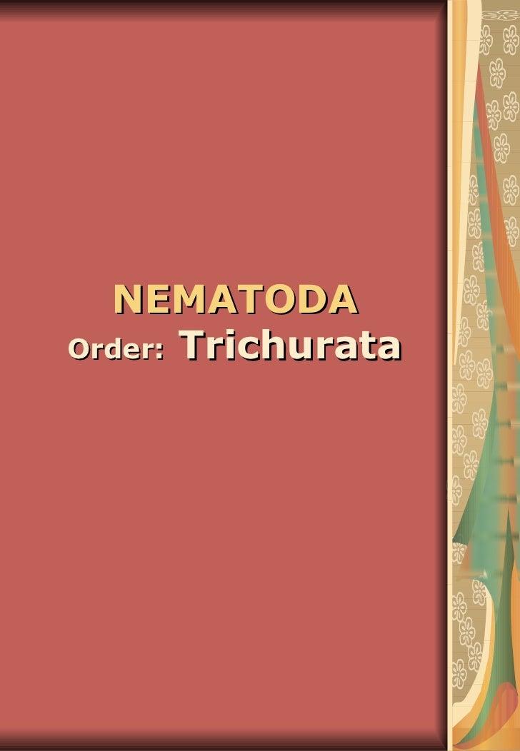 NEMATODA   Order:  Trichurata