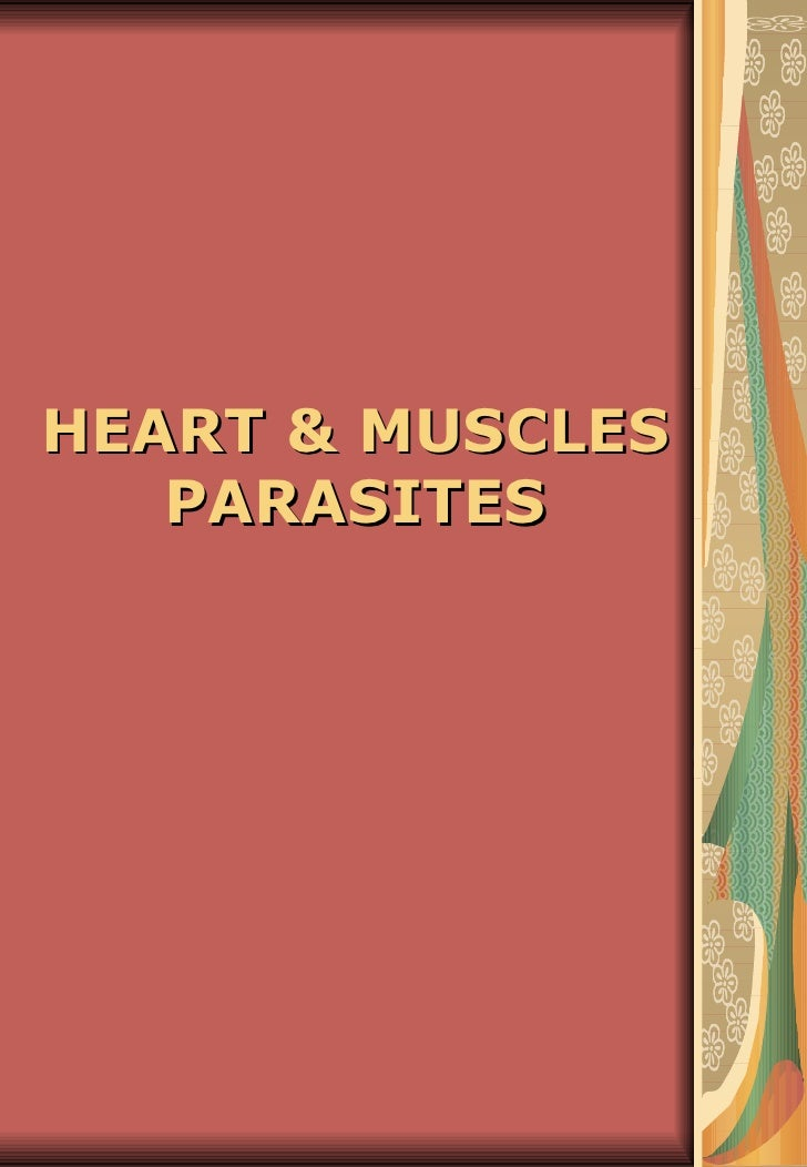 HEART & MUSCLES   PARASITES