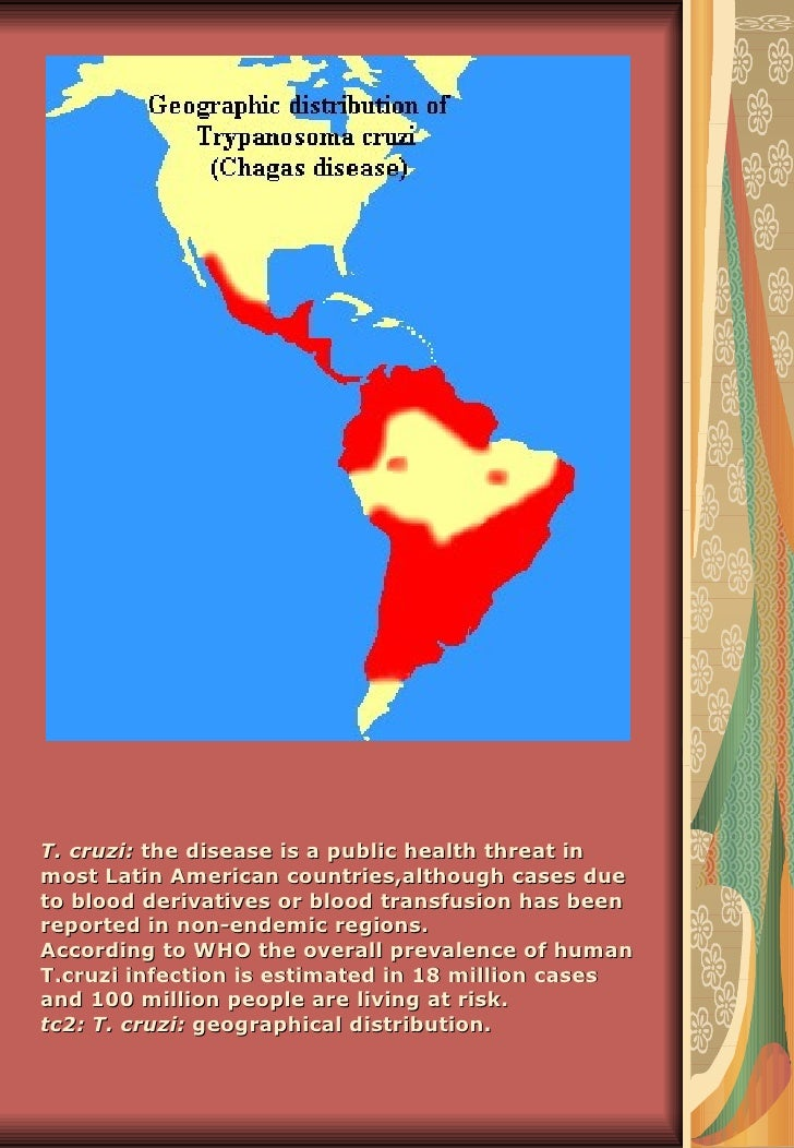 T. cruzi: the disease is a public health threat inmost Latin American countries,although cases dueto blood derivatives or ...