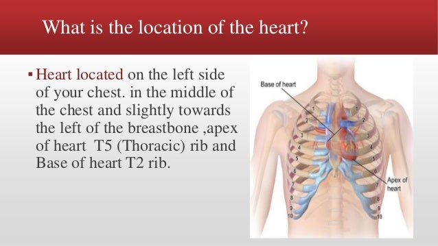 Heart physiology & conduction system in short present by Tanveer A. A…