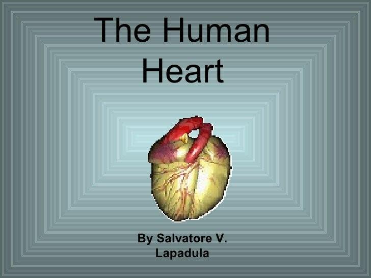 The Human Heart By Salvatore V. Lapadula