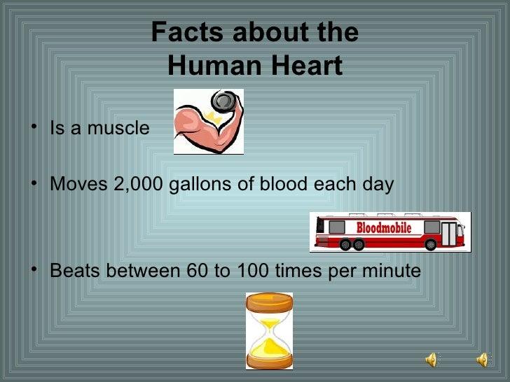 Facts about the Human Heart <ul><li>Is a muscle </li></ul><ul><li>Moves 2,000 gallons of blood each day </li></ul><ul><li>...