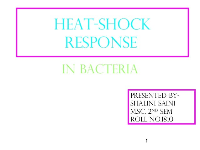 1 HEaT-SHOCK RESPONSE IN BACTERIA PRESENTED BY- SHALINI SAINI M.Sc. 2nd sem Roll no.1810