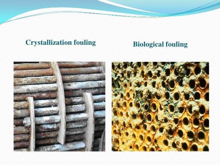 Crystallization fouling   Biological fouling