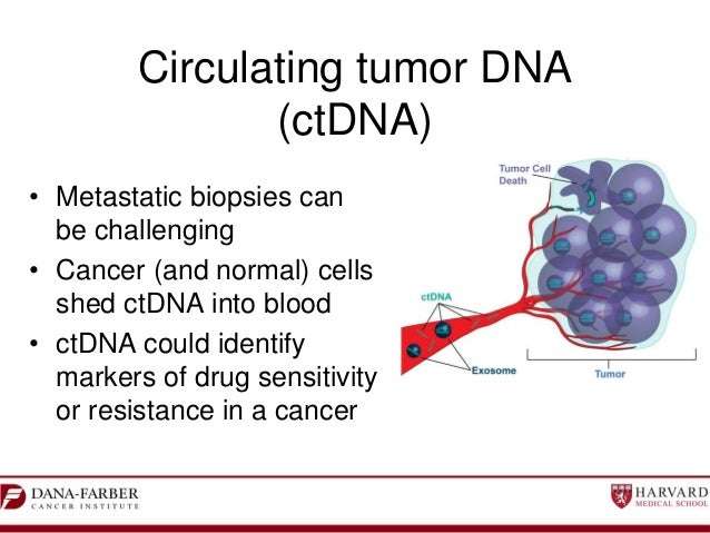 Circulating free DNA in the management of breast cancer