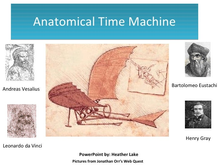 Anatomical Time Machine Henry Gray Bartolomeo Eustachi Leonardo da Vinci Andreas Vesalius Pictures from Jonathan Orr's Web...