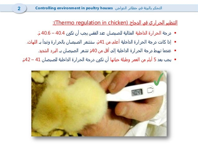 4- Heating in poultry houses  تدفئة حظائر الدواجن Slide 3