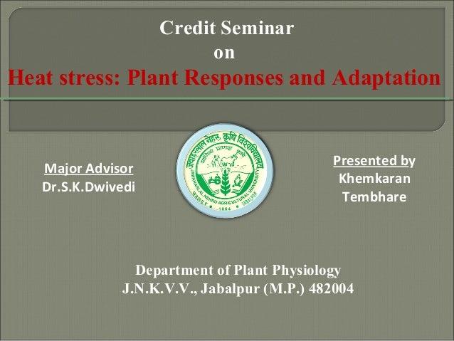 Department of Plant Physiology J.N.K.V.V., Jabalpur (M.P.) 482004 Credit Seminar on Heat stress: Plant Responses and Adapt...