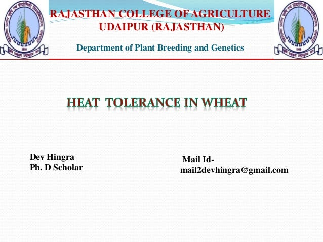 RAJASTHAN COLLEGE OFAGRICULTURE UDAIPUR (RAJASTHAN) Department of Plant Breeding and Genetics Dev Hingra Ph. D Scholar Mai...