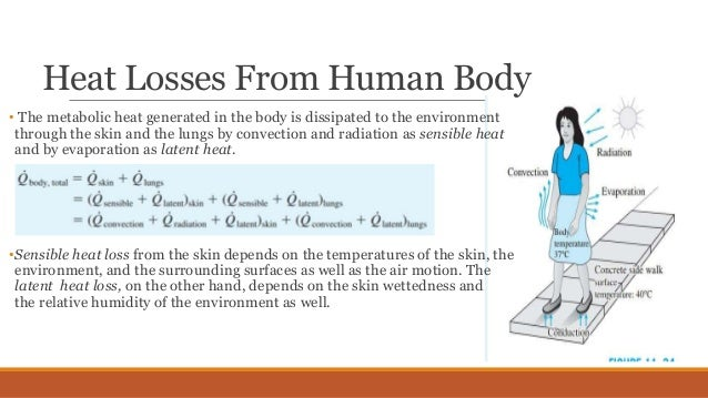 evaporation heat loss skin from weight