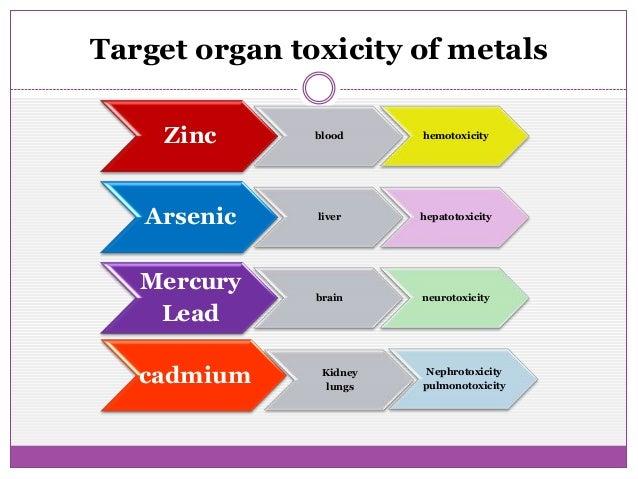 organized system essay