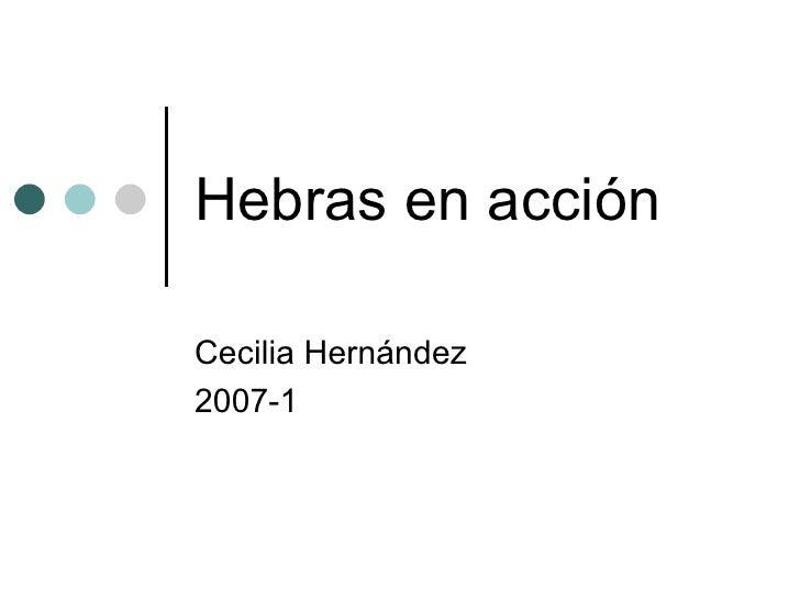 Hebras en acción Cecilia Hernández 2007-1