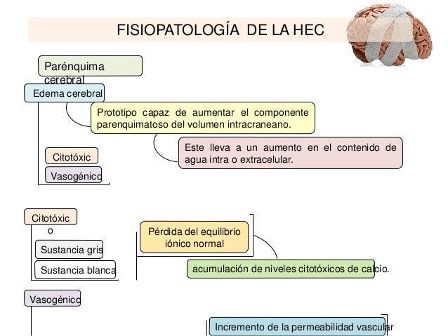 El secreto filtrado para Hipertensión portal descubierto