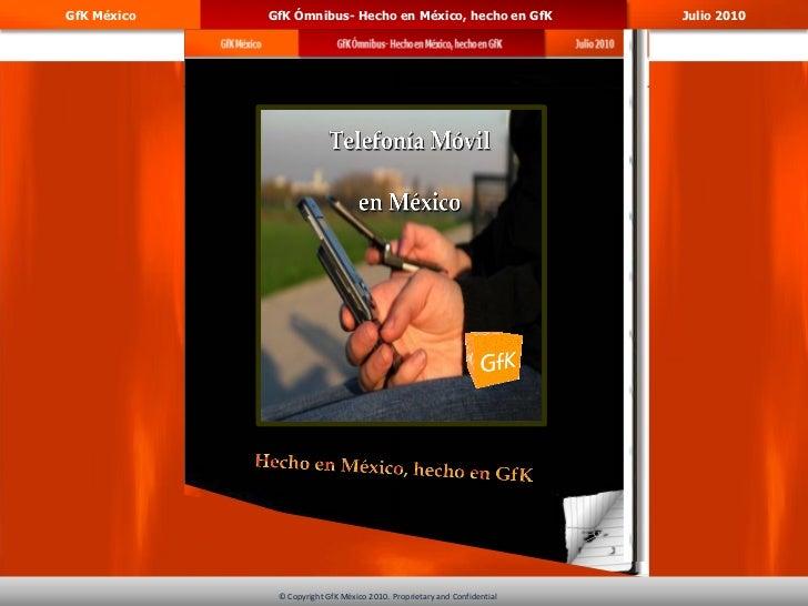 GfK México   GfK Ómnibus- Hecho en México, hecho en GfK                             Julio 2010                            ...