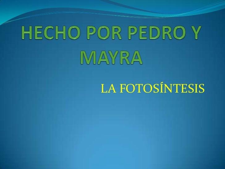 HECHO POR PEDRO Y MAYRA<br />LA FOTOSÍNTESIS<br />
