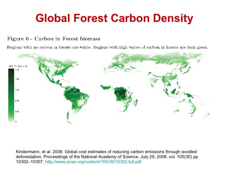 the green myth on carbon Numerous advocacy groups, scholars, think tanks and others have proposed a variety of steps to address global warming based on a set of assumptions about the green.