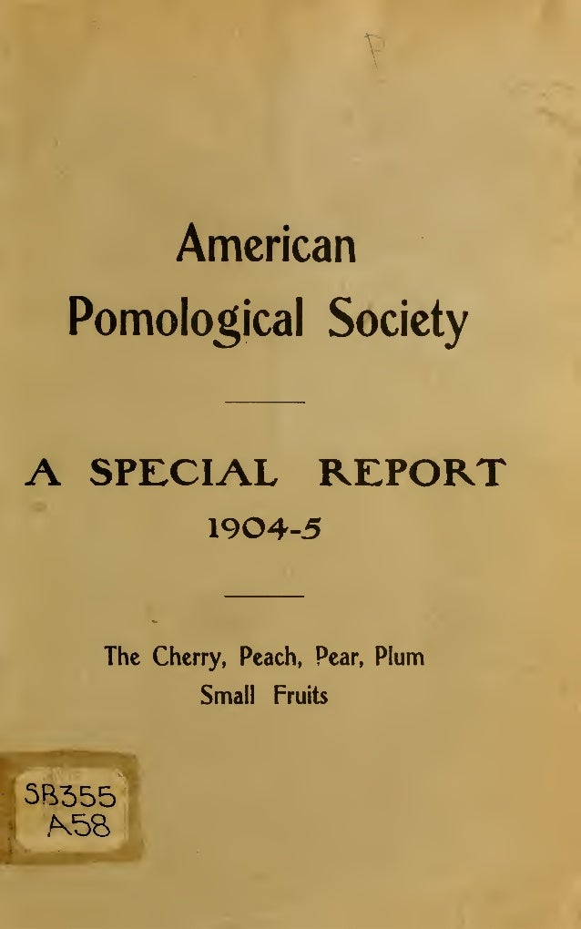 American    Pomolo^ical SocietyA    SPECIAL REPORT              1904-5     The Cherry, Peach,   Pear,   Plum             S...