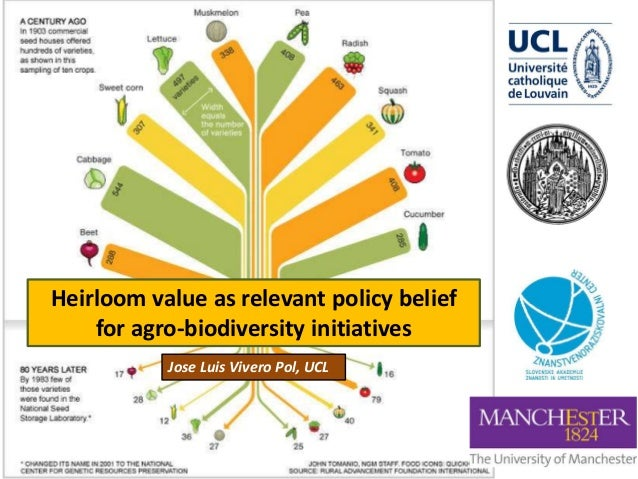 Heirloom value as relevant policy belief for agro-biodiversity initiatives Jose Luis Vivero Pol, UCL