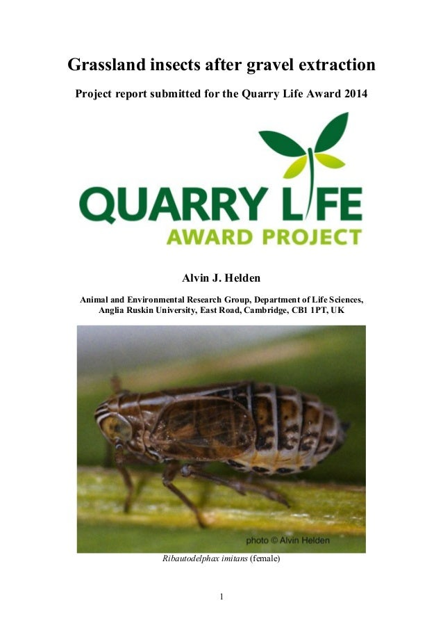 Grassland insects after gravel extraction  Project report submitted for the Quarry Life Award 2014  Alvin J. Helden  Anima...