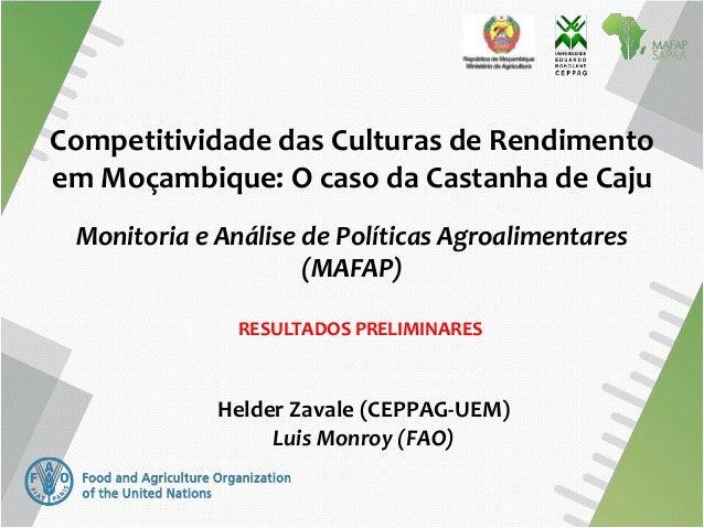 Competitividade das Culturas de Rendimento em Moçambique: O caso da Castanha de Caju Monitoria e Análise de Políticas Agro...