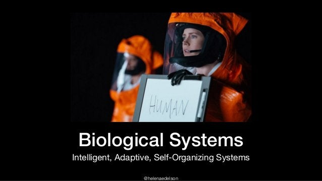 @helenaedelson Biological Systems Intelligent, Adaptive, Self-Organizing Systems
