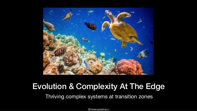 @helenaedelson Evolution & Complexity At The Edge Thriving complex systems at transition zones
