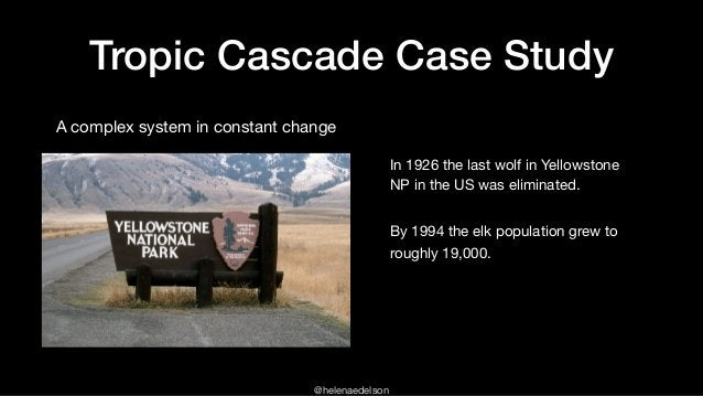 @helenaedelson Tropic Cascade Case Study A complex system in constant change In 1926 the last wolf in Yellowstone NP in th...