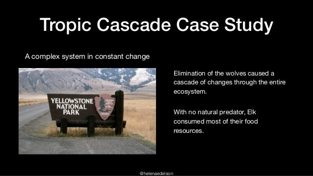 @helenaedelson Elimination of the wolves caused a cascade of changes through the entire ecosystem.  With no natural predat...