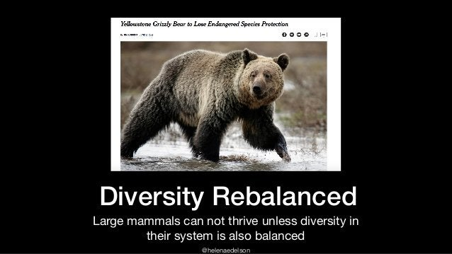 @helenaedelson Diversity Rebalanced Large mammals can not thrive unless diversity in their system is also balanced