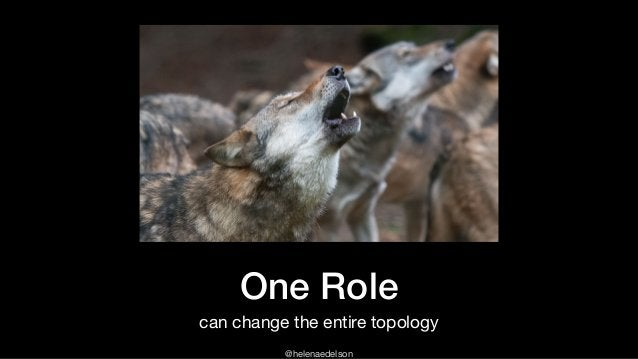 @helenaedelson One Role can change the entire topology