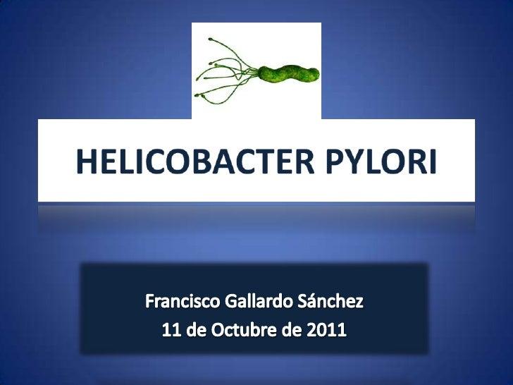 HELICOBACTER PYLORI<br />Francisco Gallardo Sánchez<br />11 de Octubre de 2011<br />