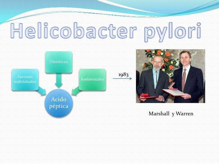 Helicobacter pylori <br />1983<br />Marshall  y Warren<br />