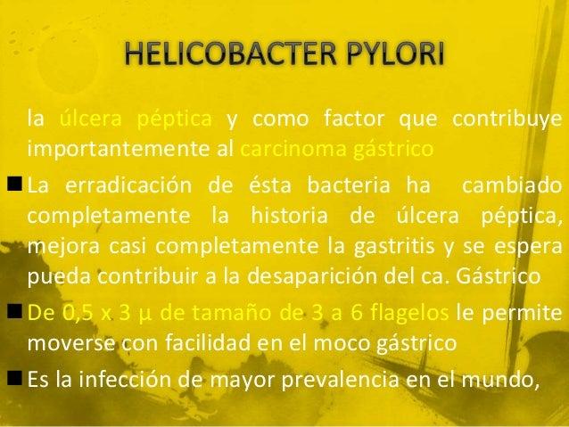 Helicobacter pylori y las enfermedades que produce