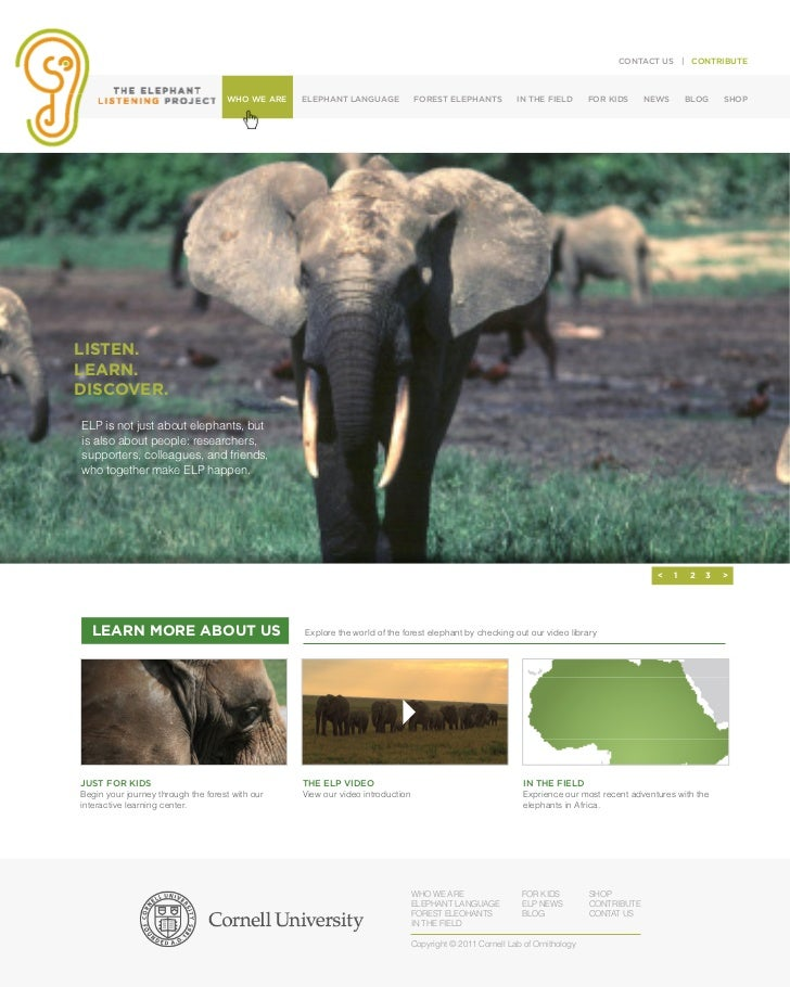 CONTACT US | CONTRIBUTE                                    WHO WE ARE   ELEPHANT LANGUAGE             FOREST ELEPHANTS    ...