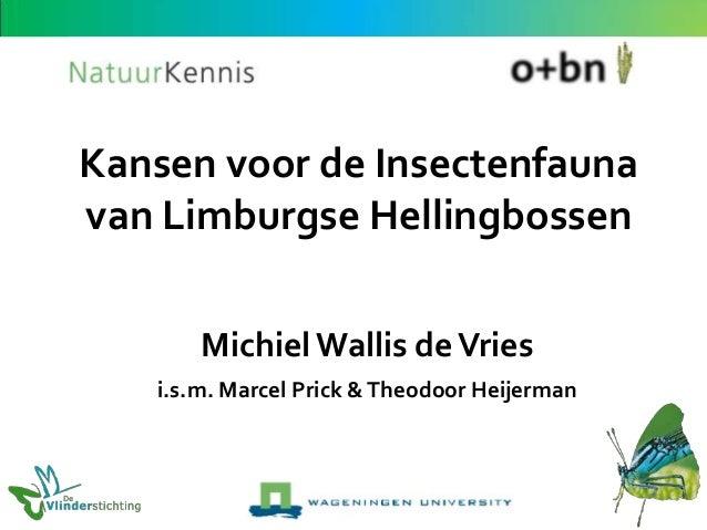 Kansen voor de Insectenfauna van Limburgse Hellingbossen Michiel Wallis de Vries i.s.m. Marcel Prick & Theodoor Heijerman