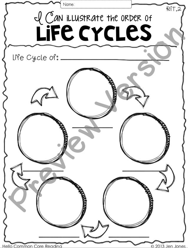 I Can illustrate the order of Life Cycles RIT.2 Life Cycle of: © 2013 Jen JonesHello Common Core Reading Name: