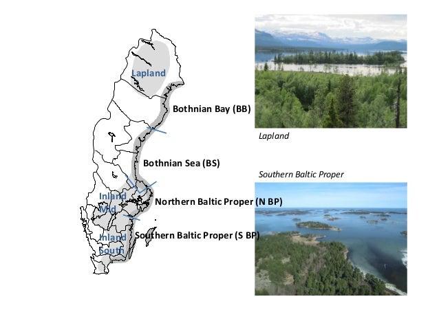 Hellström Biomonitoring Of WTE In Sweden - Sweden vegetation map