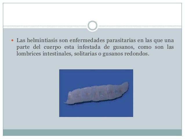  Las helmintiasis son enfermedades parasitarias en las que una  parte del cuerpo esta infestada de gusanos, como son las ...