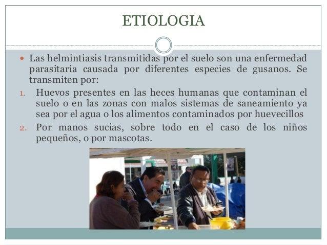 ETIOLOGIA   Las helmintiasis transmitidas por el suelo son una enfermedad  parasitaria causada por diferentes especies de...