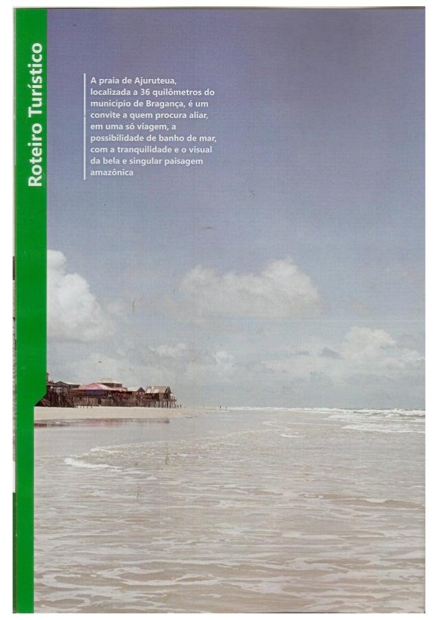 Praia de Ajuruteua, espetáculo da natureza no atlântico paraense - Heloá Canali