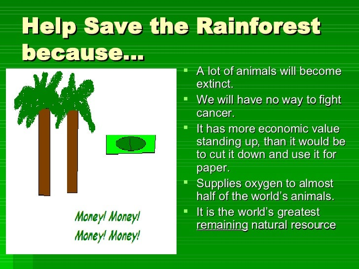 saving the forest essay Saving the forest- the evolution of all of us was possible because of the plant or forests  essay about global warming: is it to late to save our earth.