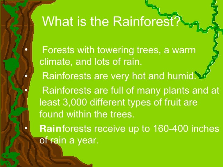 what are rainforests Tropical rainforest: tropical rainforest, luxuriant forest found in wet tropical uplands and lowlands near the equator tropical rainforests are dominated by broad-leaved trees that form a dense upper canopy and contain a wide array of vegetation and other life.