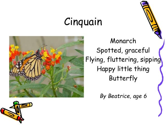 write a cinquain poem about nature and animals