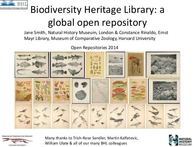 Biodiversity Heritage Library: a global open repository Many thanks to Trish-Rose Sandler, Martin Kalfatovic, William Ulat...