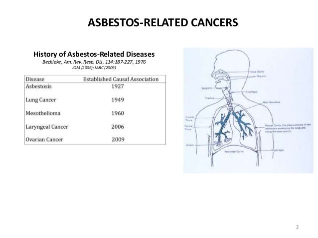 Image Result For Asbestos Related Diseases