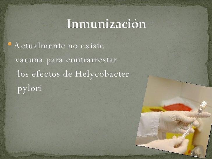 <ul><li>Actualmente no existe  </li></ul><ul><li>vacuna para contrarrestar </li></ul><ul><li>los efectos de Helycobacter <...