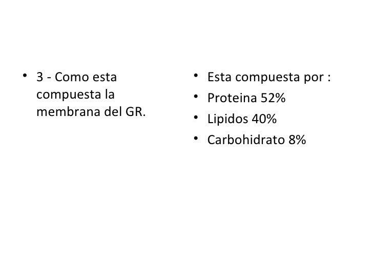 <ul><li>3 - Como esta compuesta la membrana del GR. </li></ul><ul><li>Esta compuesta por : </li></ul><ul><li>Proteina 52% ...
